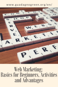what is web marketing basics for beginners