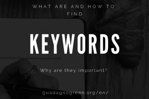 Keywords – Why Are They Important?