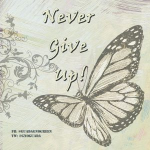 never_give_up-guadagnogreen