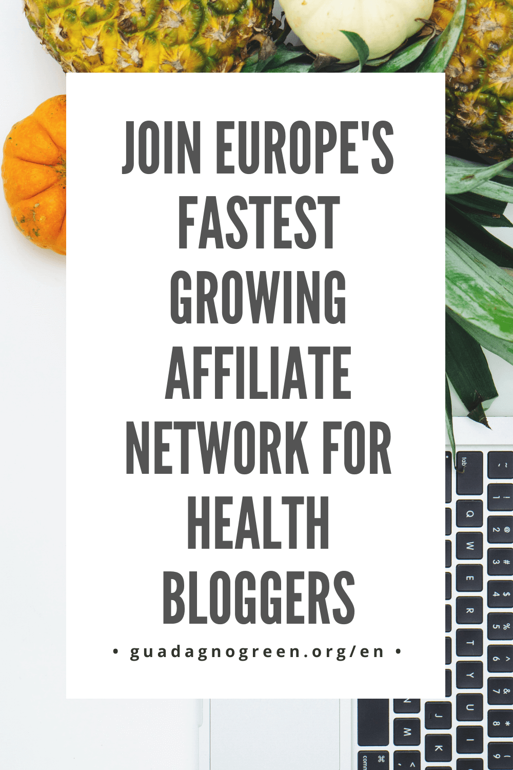 health trader affiliate network review